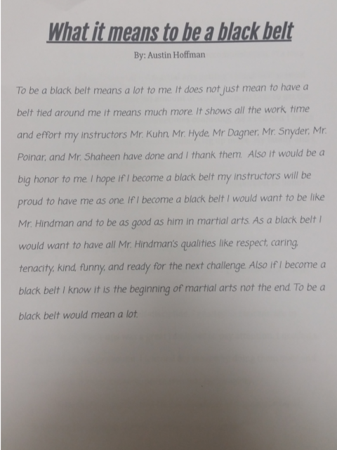 Black belt essay